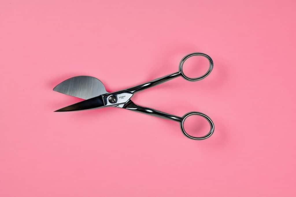 On open pair of Ginger Duck bill scissors.